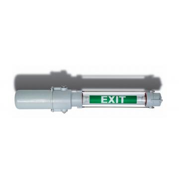 Exit Light Fixture
